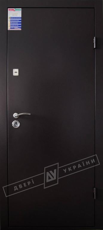 """Двері вхідні зовнішні """"САЛЮТ м/м"""" 2050*960мм, RAL 8019, праві."""
