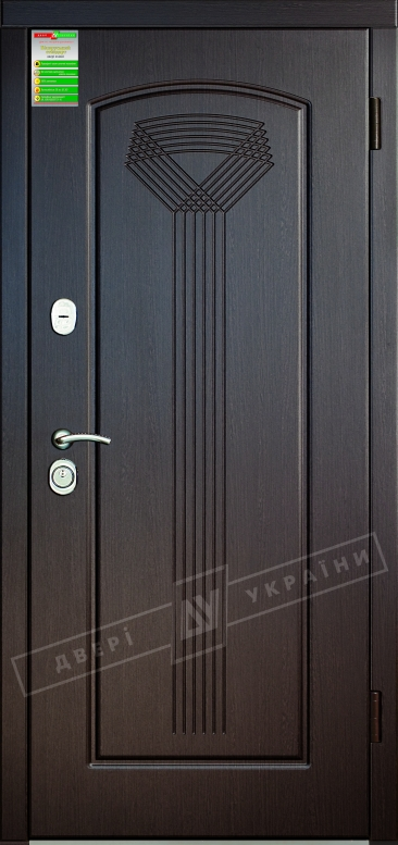 Двери входные серии БС / Комплектация №1 [RICCARDI] / САЛЮТ / Венге южное МВР 1998-10