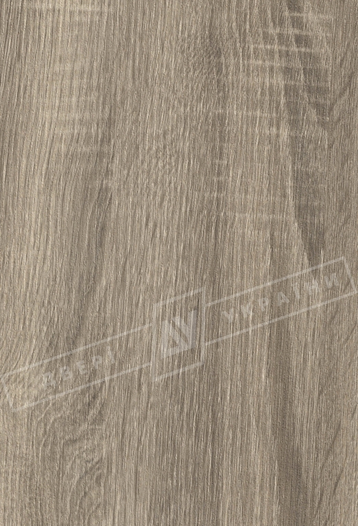 Дуб сантана МВР- 9097-9