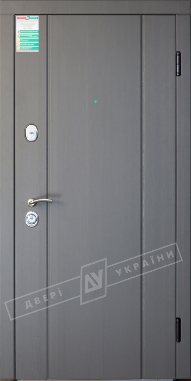 """Двері вхідні внутрішні""""Білоруський стандарт 2/1""""2040*880мм,""""Стелла"""" реалвуд графіт МСH 77527.,праві"""