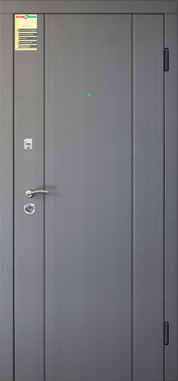 """Двері вхідні внутр, """"Сіті 1/1"""" 2050*860мм, модель """"Стела"""" реалвуд графіт МСH 77527.ВДМ, праві."""