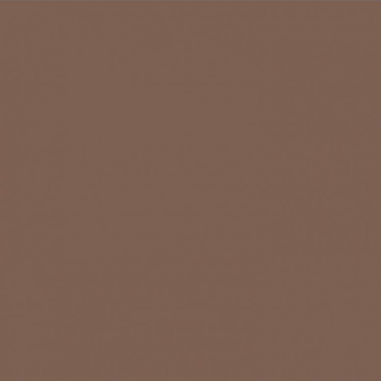 RAL 8025 Бледно-коричневый Pale brown