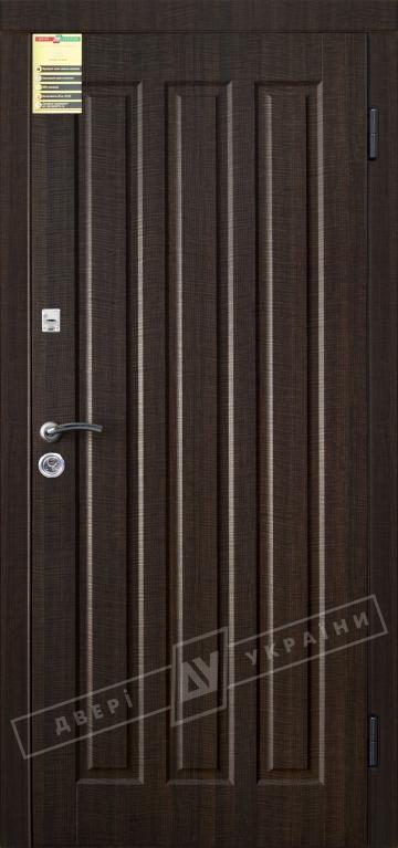 Двери входные серии СИТИ / Комплектация №1 [RICCARDI] / ТРОЯНА / Венге тёмный распил